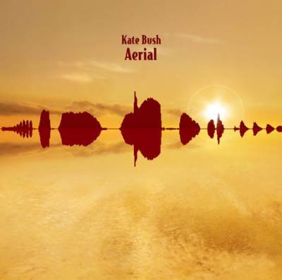 aerial_sm